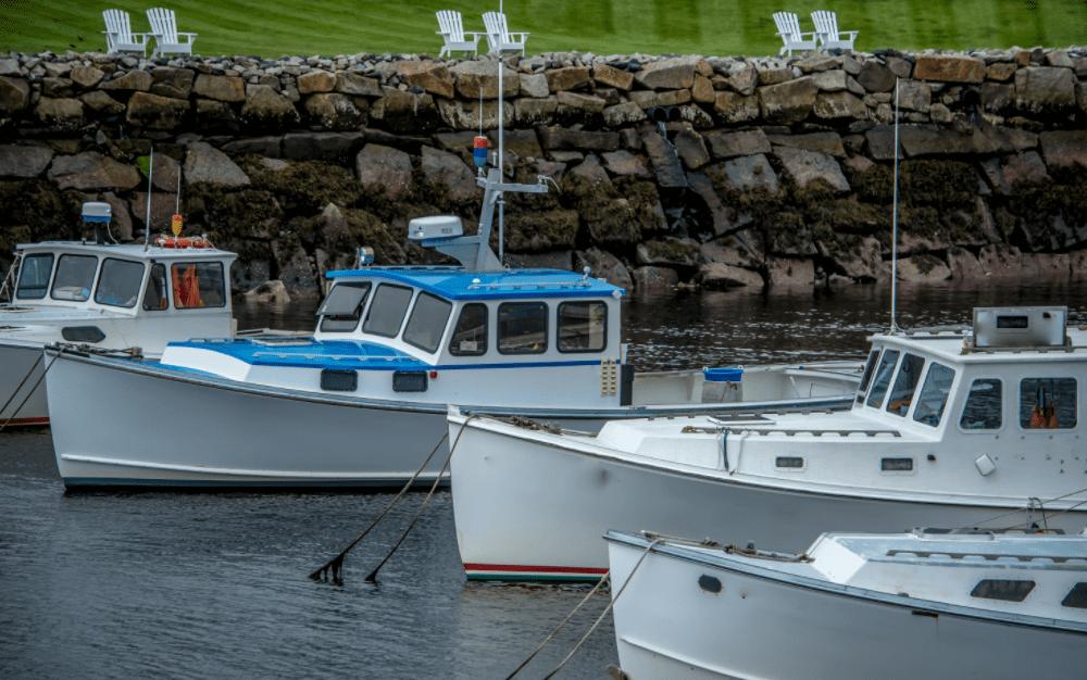 Finest Kind Scenic Boat Cruises