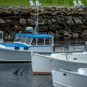 Boat Tours out of Perkins Cove